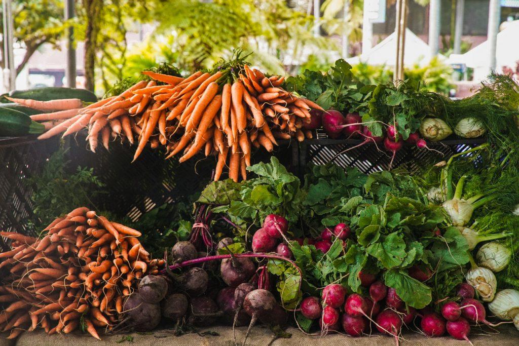 Seizoensgroenten wortel biet radijs
