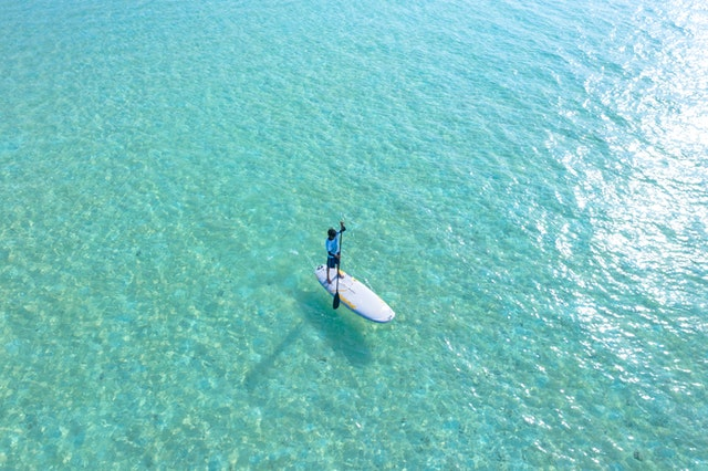 sup board in water